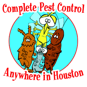 Pest Control anywhere in Houston