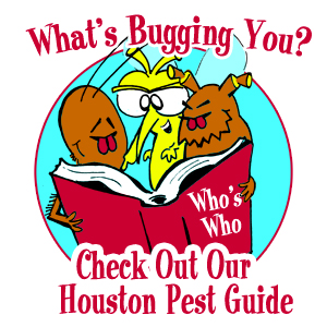 Check Out Our Houston Pest Guide