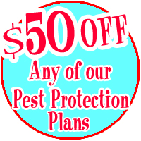 Get $50 off any of our pest control plans